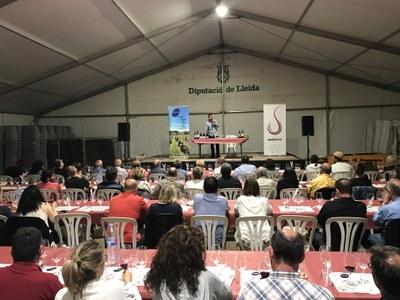 Segona edició del Tast de vins de les Cassoles de Tros organitzat per l'associació Tastavins de Juneda